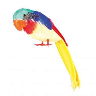 Papagei mit bunten Federn 30 cm