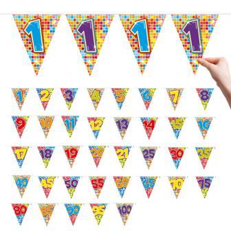 "Zahlen-Wimpel-Girlande ""Happy Crazy Birthday"" 6 m - 1"