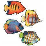 Dekobilder Korallenfische 41 cm 4-tlg.