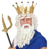 """Perücke """"König der Meere"""" mit Bart und Augenbrauen 4-tlg."""
