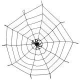 Raumdeko Spinnennetz mit Spinne XXL 150 cm