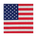 "Servietten ""United States of America"" 20er Pack"