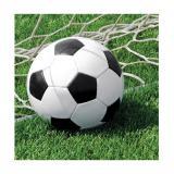 "Servietten ""Fußball im Tor!"" 18er Pack"