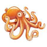 "Wanddeko ""Lustiger Oktopus"" 81 cm"