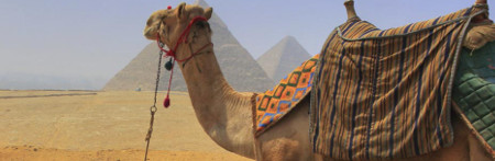 Deko Ägypten